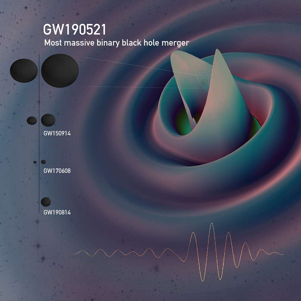 A still from a numerical relativity simulation for GW190521 showing the gravitational waves emitted just before merger, overlaid with the signal as observed by the detectors. This is the largest binary system yet detected as shown by the horizons of this event compared to several previous events. (EPO)